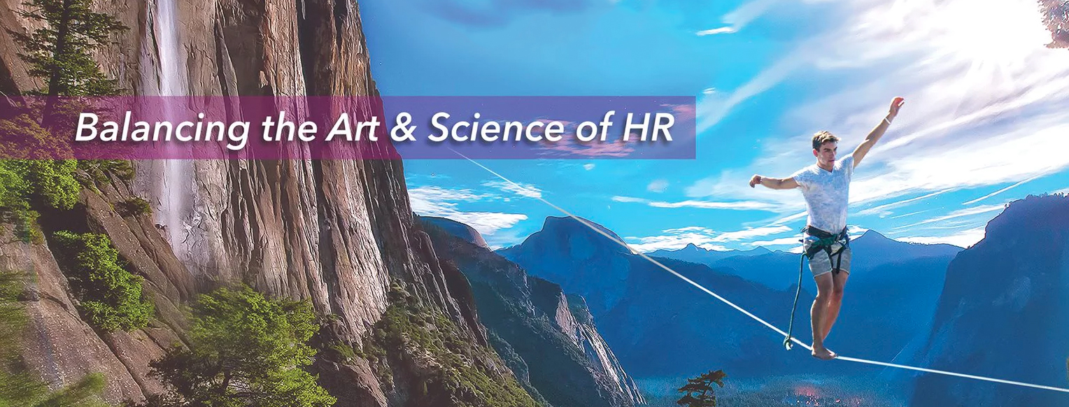 DCSI banner - Balancing the art and science of HR